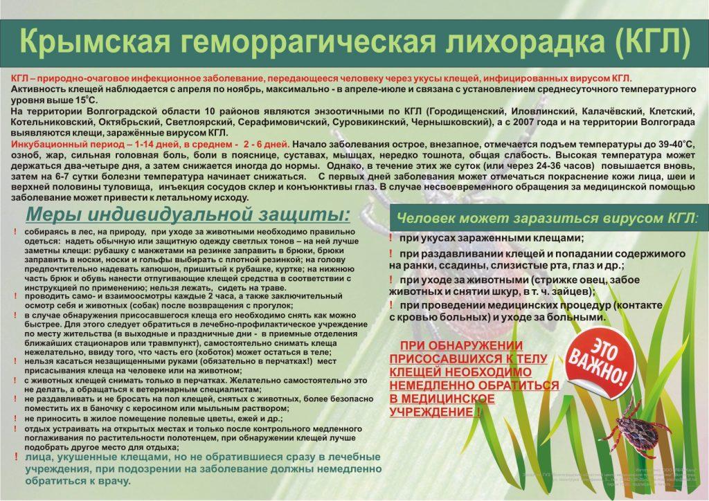 Плакат Крымская геморрагическая лихорадка